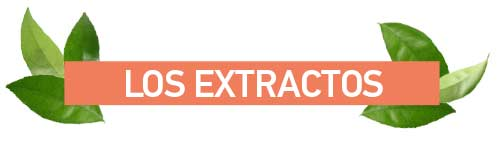 Titulas Extractos
