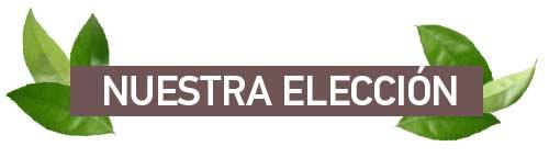 Titular Nuestra Eleccion /></div>  <div class=