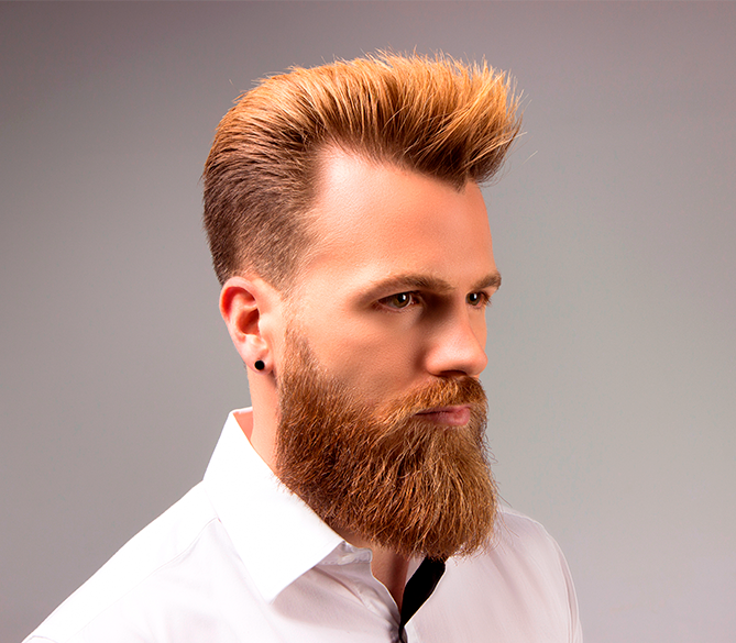 Introduction to the barbering world