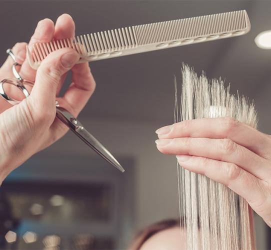 How to perform a dry haircut